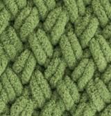 485 korytnačia zelená